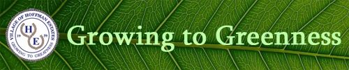 Growing to Greenness Banner 2