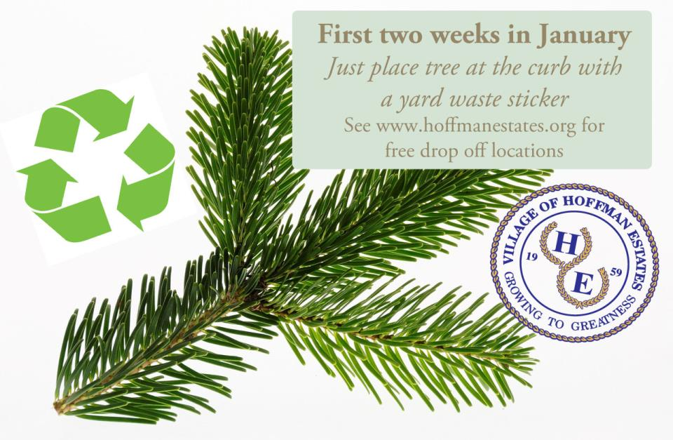 Tree recycling notice_see news item